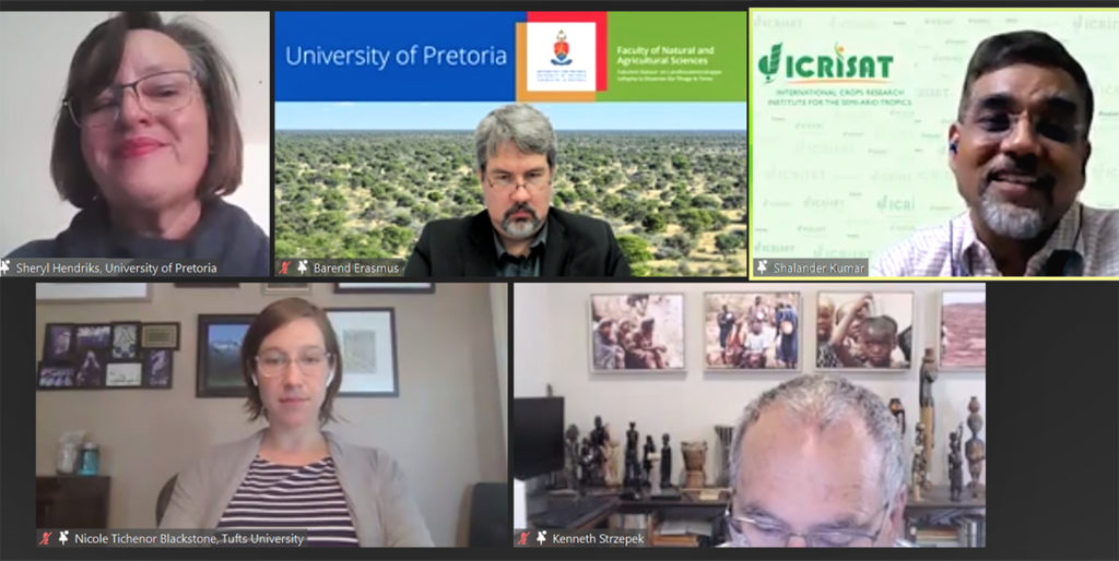 Screenshot of the panel discussion. Image: S Kumar, ICRISAT