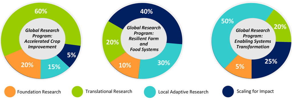 The share of foundation, translational, local adaptive and scaling-for-impact research in the three Global research programs.