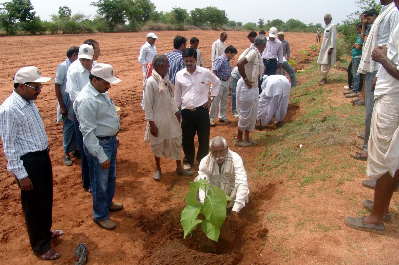 agricultural practices in madhya pradesh